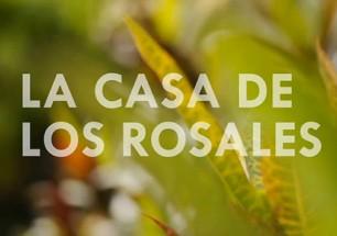 LaCasaDeLosRosales-ImgDestacada